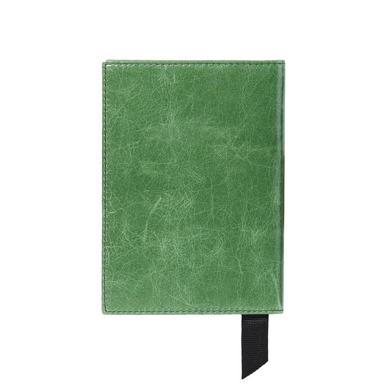 Deri Pasaportluk 1010024165005