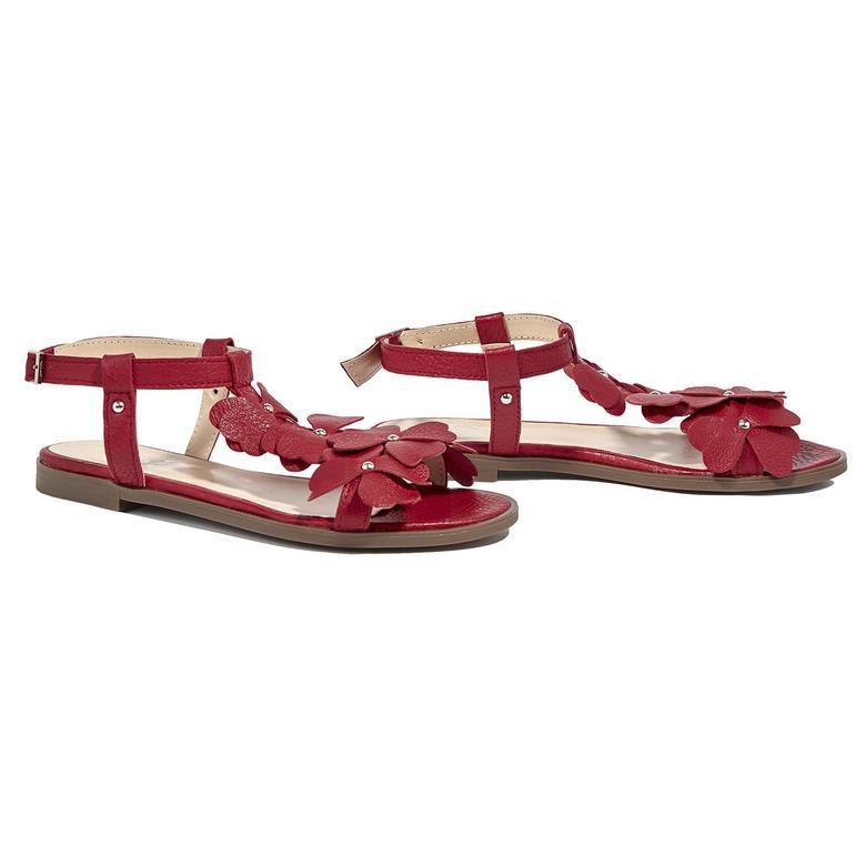 Belle Kadın Deri Sandalet 2010044629001