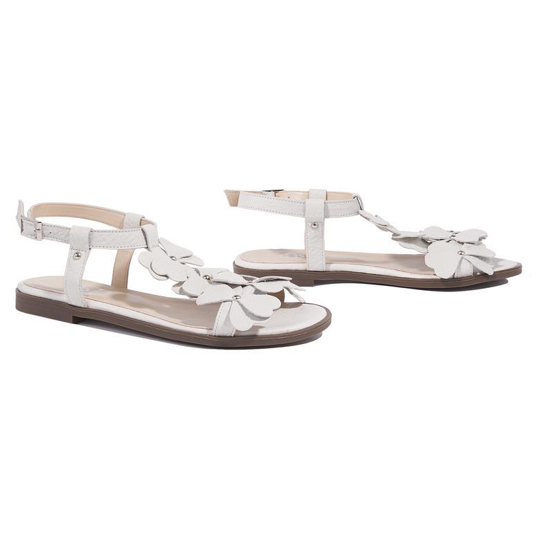 Belle Kadın Deri Sandalet 2010044629024