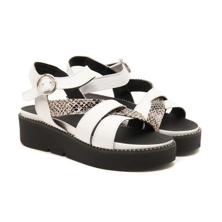 Rayne Kadın Sandalet 2010047678001